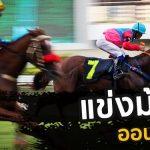 พนันแข่งม้า-ออนไลน์